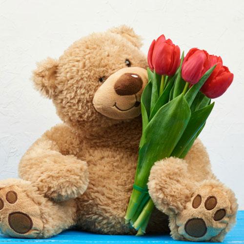Send Flowers with Teddy Bears Online
