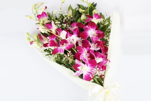 Send Orchids Online