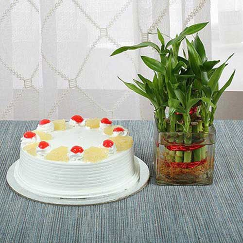 Pineapple Cake N Lucky Bamboo