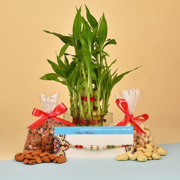 Stylish N Healthy Rakhi Surprise