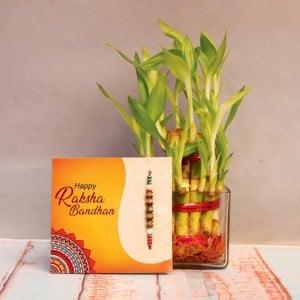 Two layer bamboo with Rakhi Combo