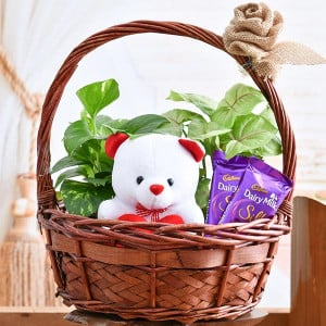 Basket of Joy for Someone Special