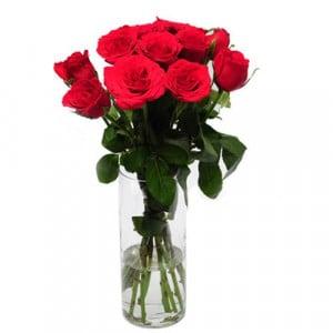 Rose Delight
