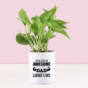 Money Plant In Personalised Awesome Dad Mug