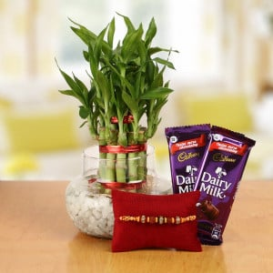 Rakhi With Plants Online Delivery