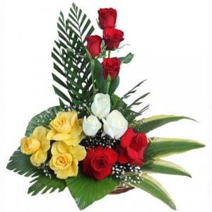Love Rosa Jaanu