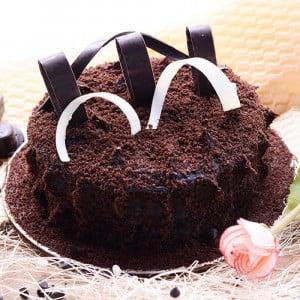 Velvety Choco Truffle Cake