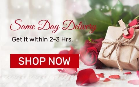 Same Day Delivery Gifts Online India